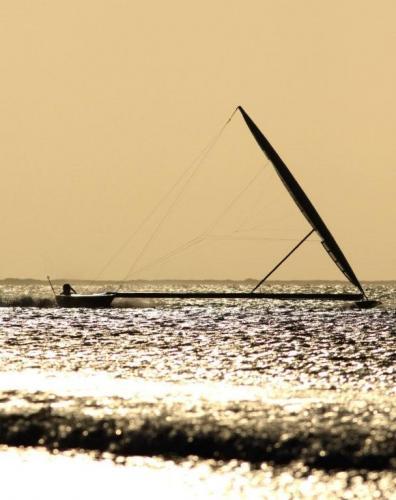 Paul Larsen on Vestas Sailrocket (Photo courtesy of Sailrocket.com)