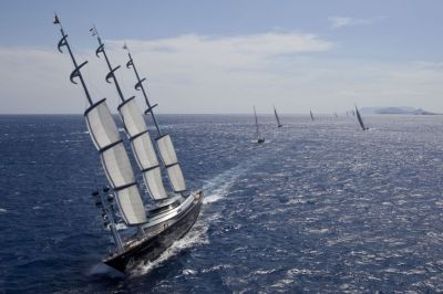 Maltese Falcon (Photo by Rolex / Carlo Borlenghi)