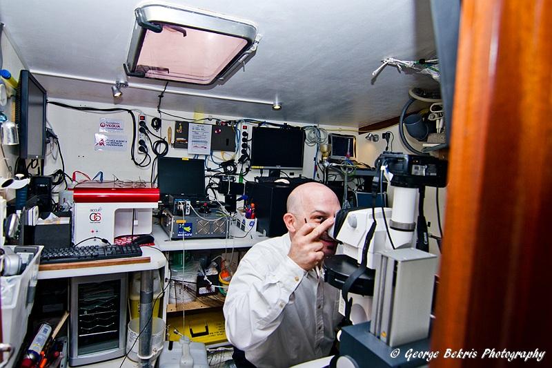 Lab on Tara (Photo by George Bekris)