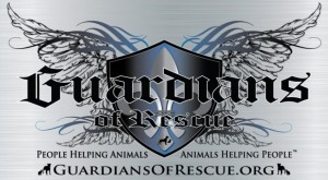 The Guardians of Rescue
